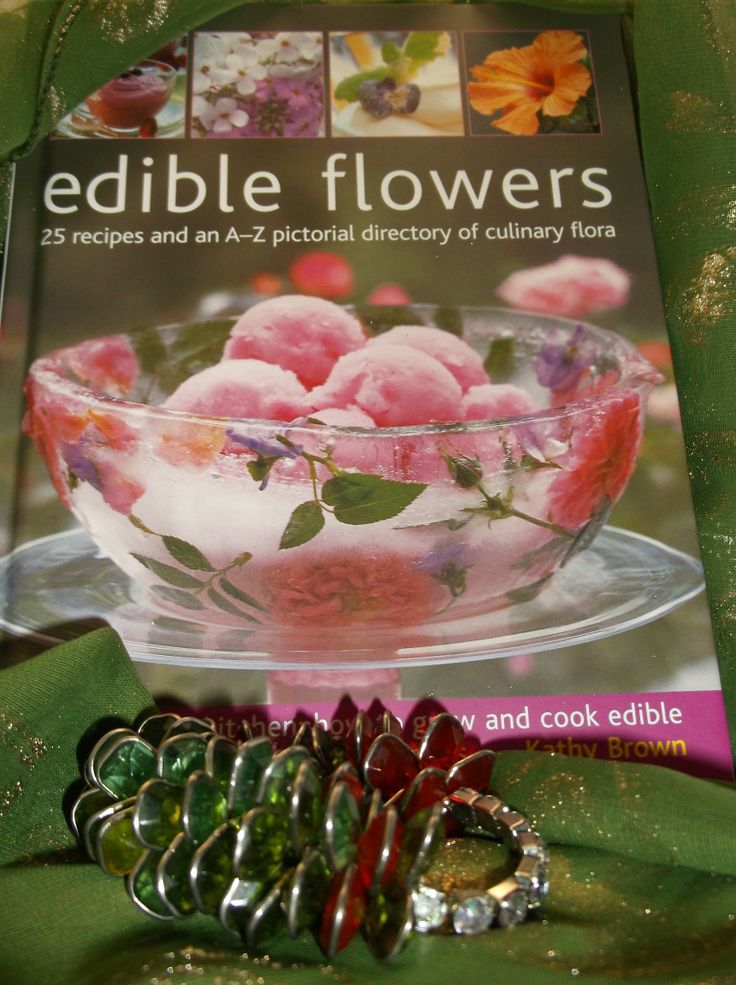 "Greenery, eatery ""Edible Flowers:""25 recipes and an A-Z pictorial directory of culinary flora. From garden to kitchen: how to grow and cook edible flowers, in 400 beautiful photographs.""   Just like a garden this scrumptious green and red jeweled bracelet, with a silver gunmetal chain attachment will make you the diva of the garden party!"