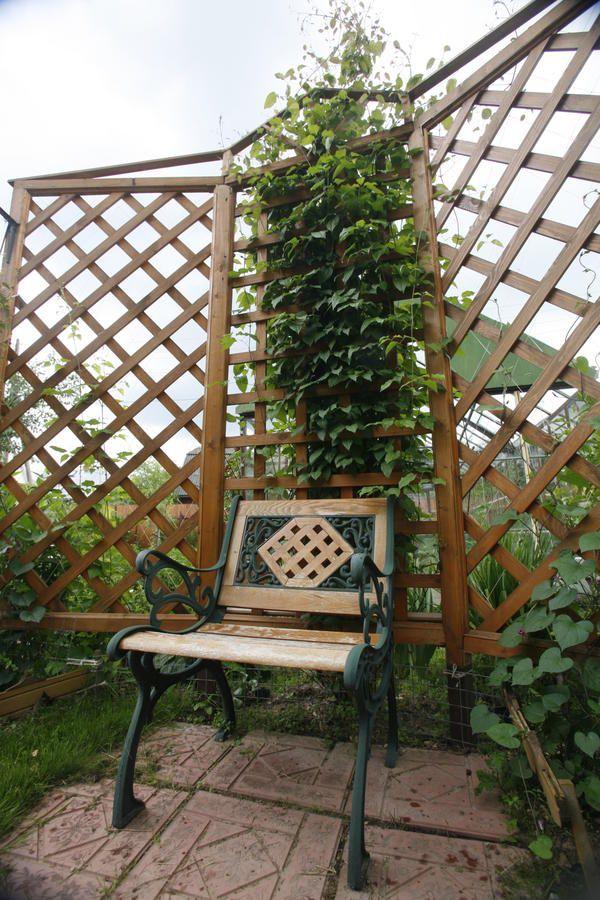 Изящная перегородка не утяжеляет небольшой сад