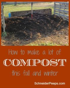 SchneiderPeeps - How to make a lof of compost this winter.  Compost is one of the most important things you need for a thriving garden.  But it can get expensive.  This is how we make a lot of free comost each winter.