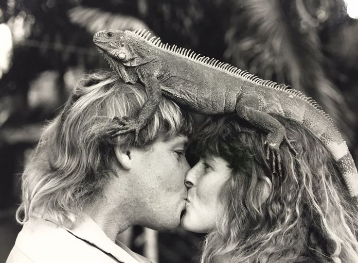 Terri Irwin marks what would have been her 25th wedding anniversary  Terri Irwin honored her late husband Steve by posting a cute throwback photo on social media.  #DWTS #TheCrocodileHunter #BindiIrwin #TerriIrwin @TheCrocodileHunter