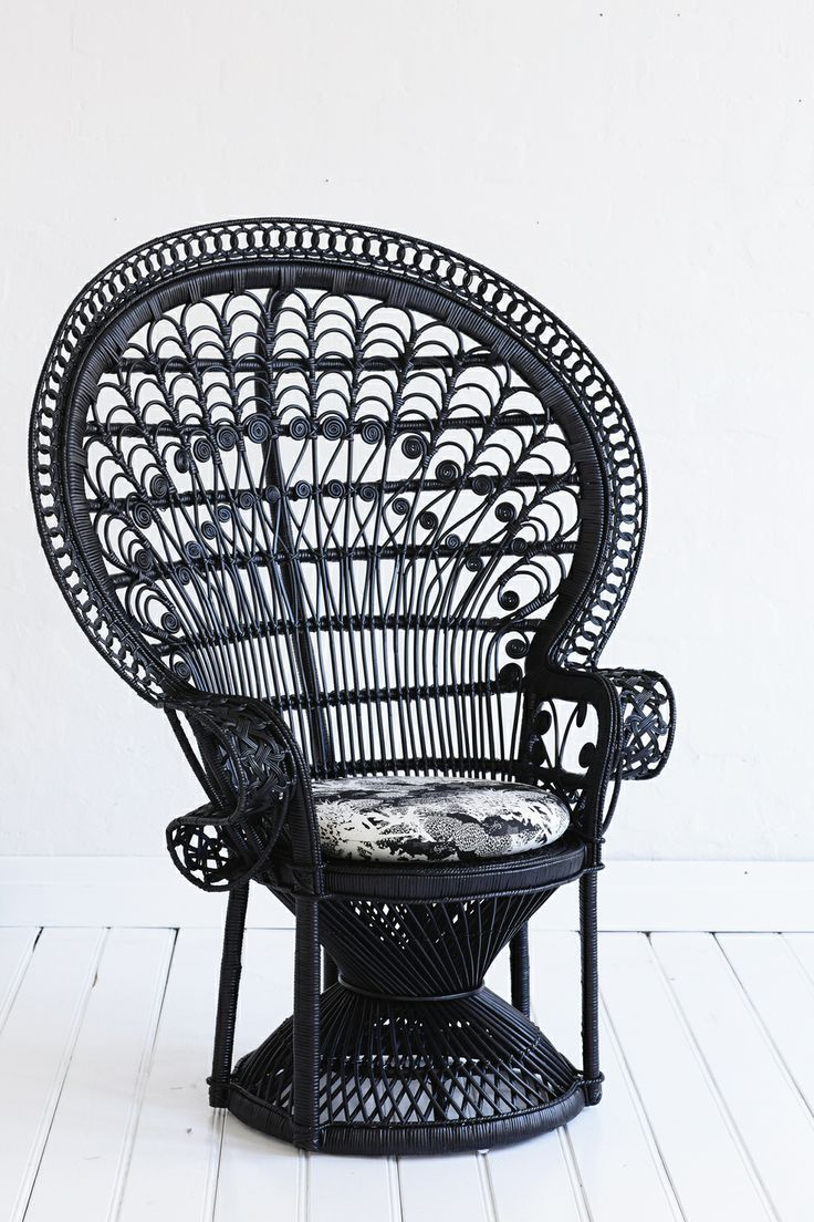 solid black peacock chair with botanical print looking mean!