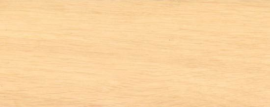 Wood Species for Hardwood Floor Medallions, Wood Floor Medallions, Inlays, Wood Borders and Block parquet - HORNBEAM