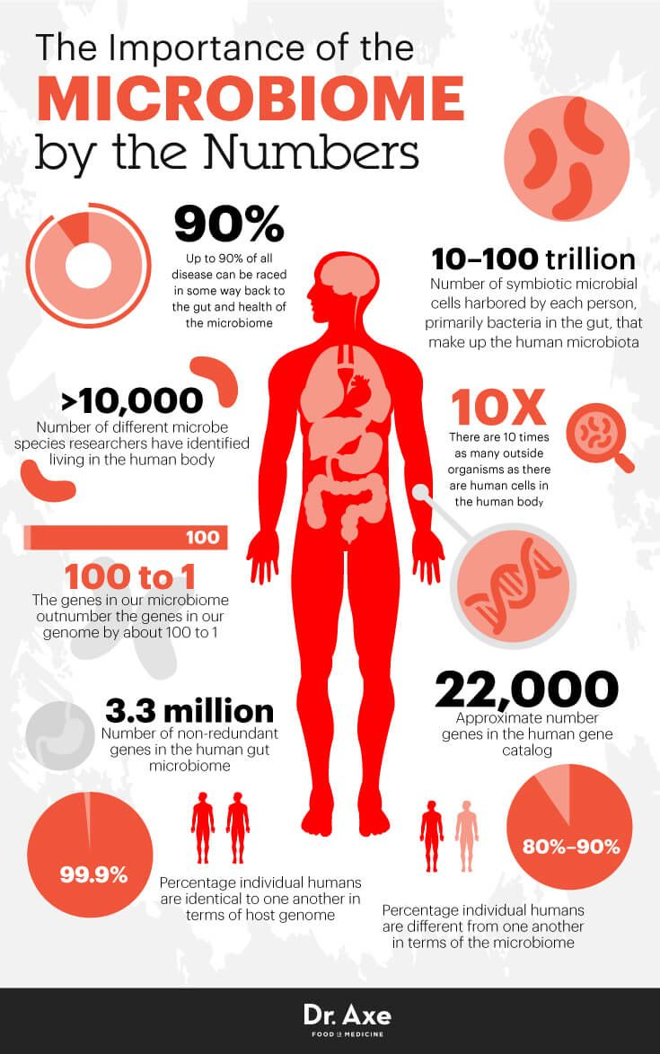 Human Microbiome: How It Works + a Diet for Gut Health ...