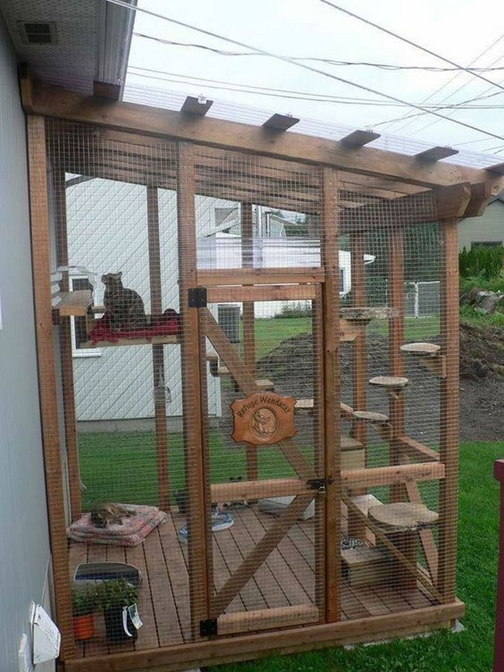 How to Turn an IKEA Bookcase Into a Catio Your Projects