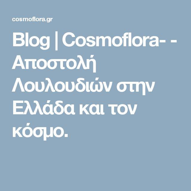 Blog   Cosmoflora-  - Αποστολή Λουλουδιών στην Ελλάδα και τον κόσμο.