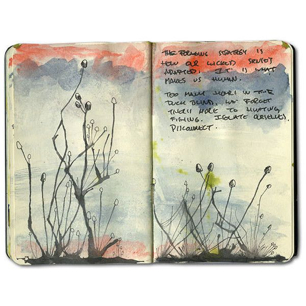 Amazon Jungle Moleskine Journal ❤ liked on Polyvore featuring books, fillers, notebook, backgrounds, journals, text, quotes, magazine, doodle and phrase