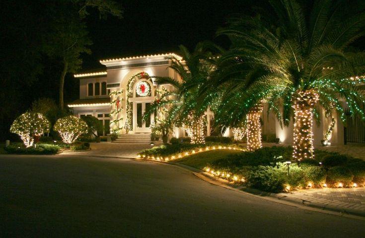 Déco Noël: guirlande lumineuse extérieur et sapins