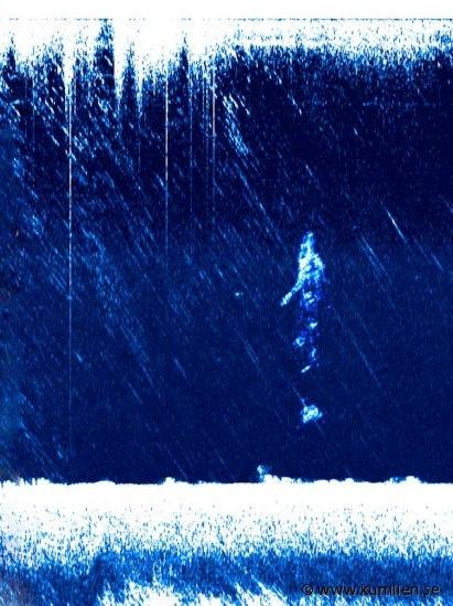 Echograms | Anders Kumlien konstnär artist @kumlien.se  #sidescan sonar, lowrance lss-1, simrad, echoe, echogram, sonogram, blue, underwater, art, bottom formations, figures, sheetmetal, descending