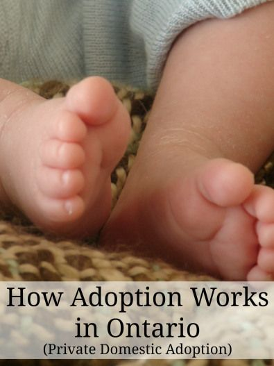 How the Private Domestic Adoption process works in Ontario, Canada #Adoption #Canada