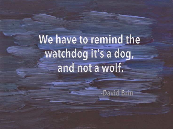 We have to remind the watchdog it's a dog, and not a wolf. -- David Brin