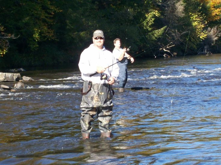 115 best images about photo time on pinterest fall for Salmon fishing pulaski ny