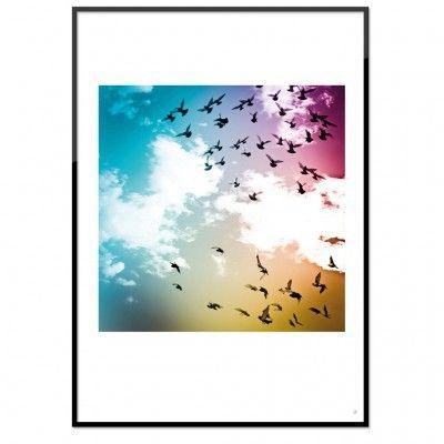 """""""Flygande fåglar"""" - poster"""