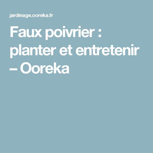 Faux poivrier: planter et entretenir – Ooreka