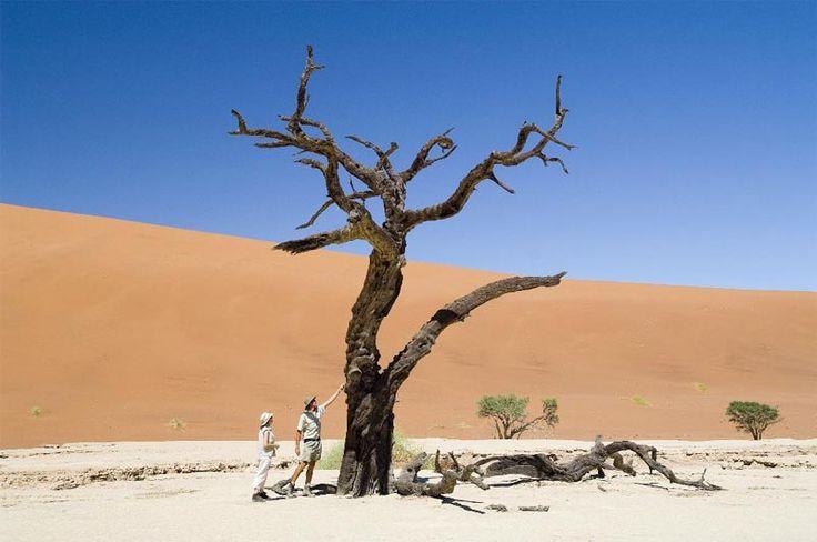 Self-drive Namibia