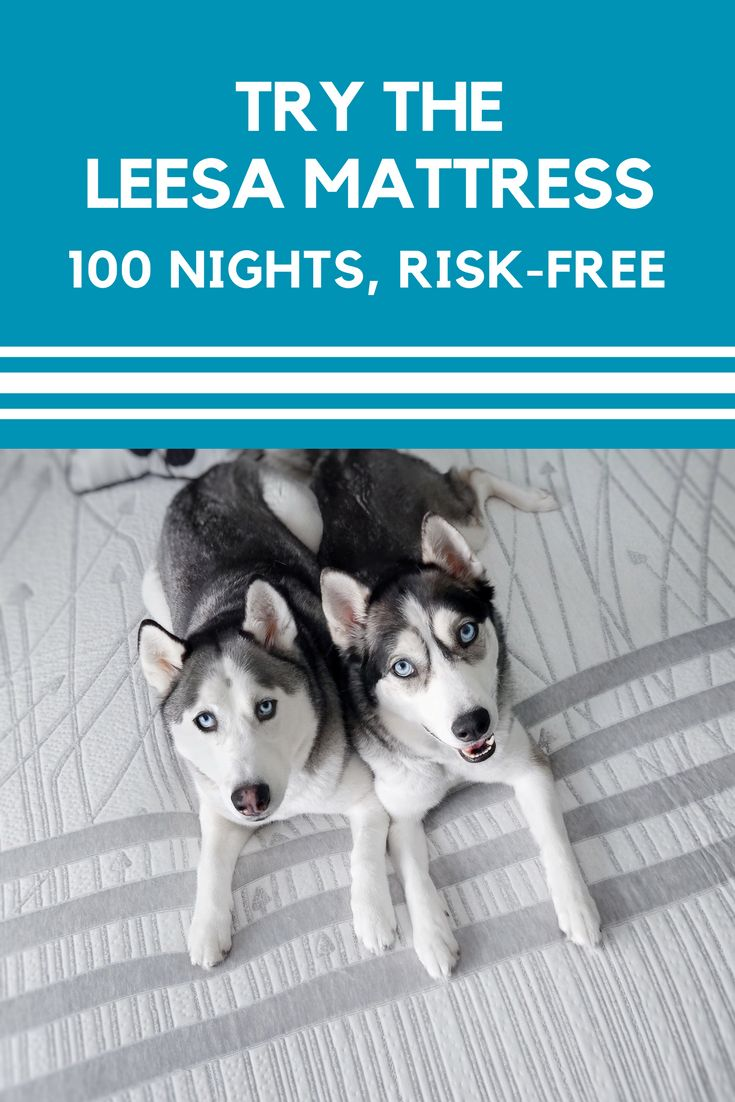 With over 10,000 five star reviews, see for yourself why the Leesa mattress is the better new mattress. Start your 100-night risk free trial today!