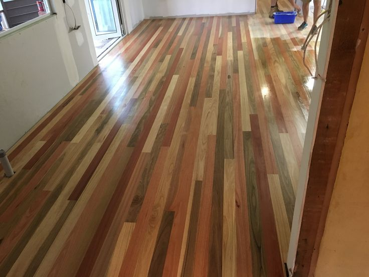 Mixed hardwood floor Rose gum, tallow, pearl beech & spotted gum