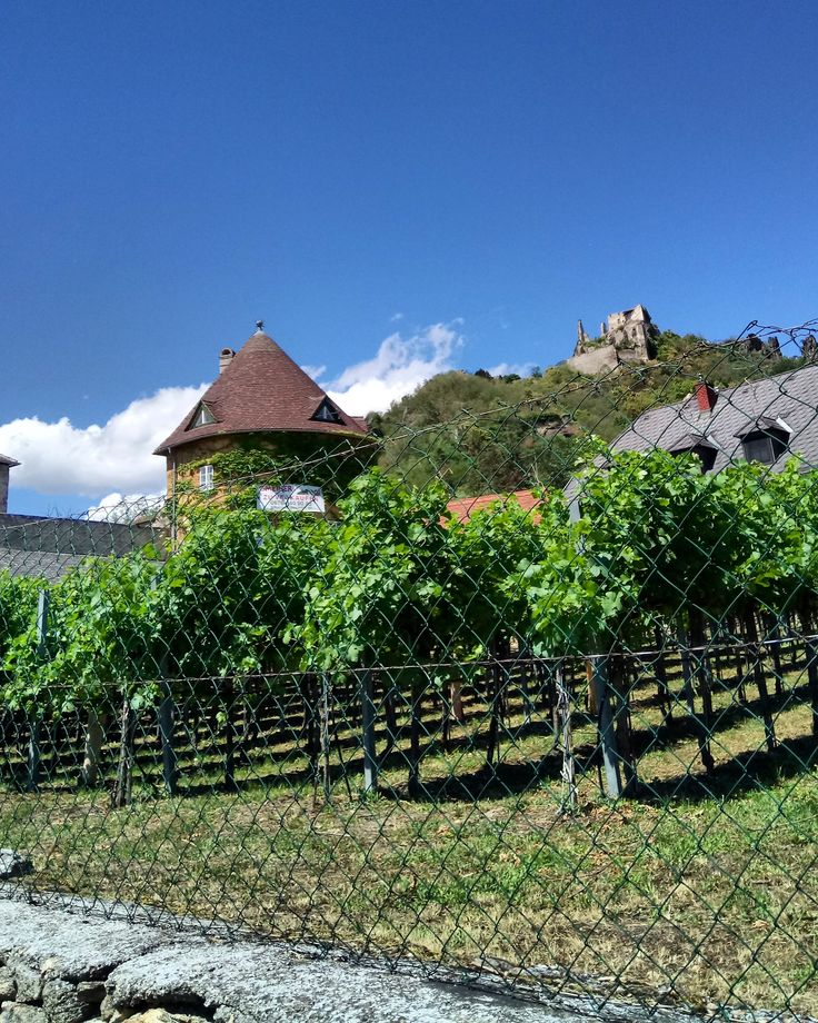 Dürnstein, Austria #trip #wine #vineyard #outdoors #europe