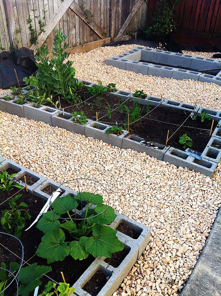 Vegetable garden using cinderblocks for raised beds.  want to cuter, but have a ton of these I need to use