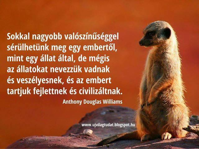Anthony Douglas Williams idézete az állatok és az emberek megítéléséről. A kép forrása: ujvilagtudat @ blogspot