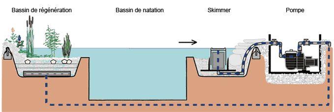 Bassin de baignade, piscine naturelle, piscine écologique, baignade nature - - La baignade biologique