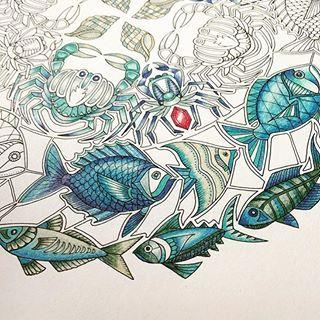 Jardim Floresta Oceano @inspiracaojardimsecreto Instagram profile - Pikore