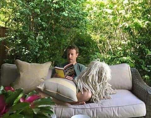"""""""أسس مارك موقعه الشهير وجعلنا ننشغل به ليل نهار عن القراءة والاطلاع والبحث وجلس هو ليقرأ كتابه بهدوء!"""