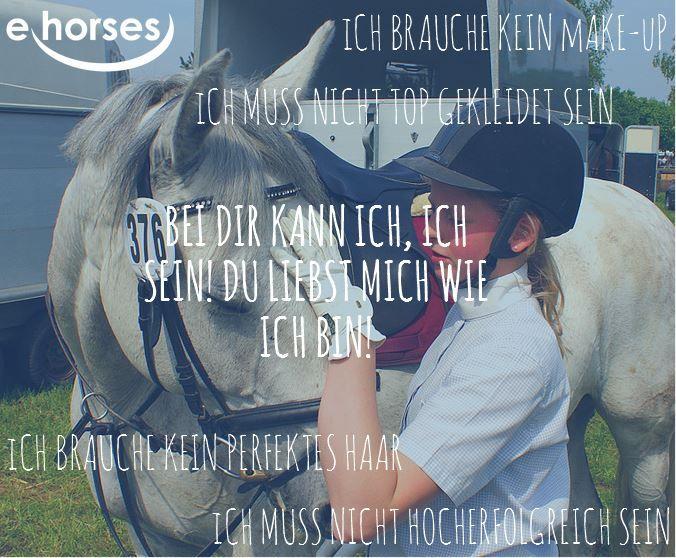 Bei ihnen können wir sein, wie wir sind! Finde deinen Partner-Pferd auf www.ehorses.de
