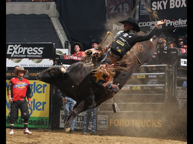 88 best Bull riding images on Pinterest | Rodeo life ...