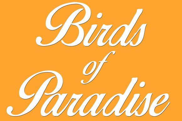 Birds of Paradise © by Script-house on @creativemarket