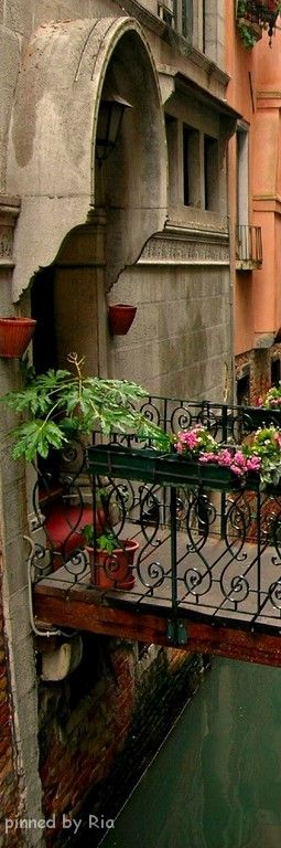 ✈️ ♕ Italy ♕ {what's not to love about Italy?}