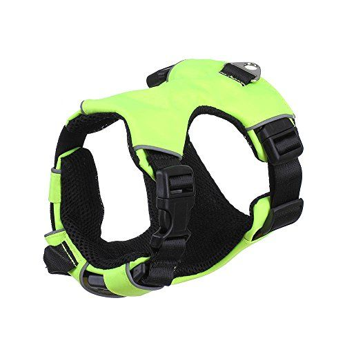rely2016 Dog Harness Adjustbale Non Pull Pet Harness Soft Vest Padded Dog Body Harness S Green >>> Click on the image for additional details.Note:It is affiliate link to Amazon.