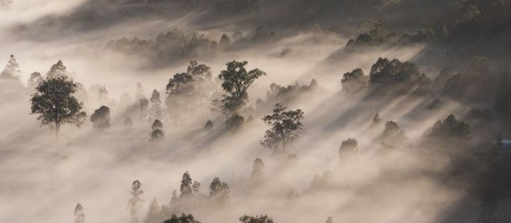 Hunters valley Photo - Visual Hunt