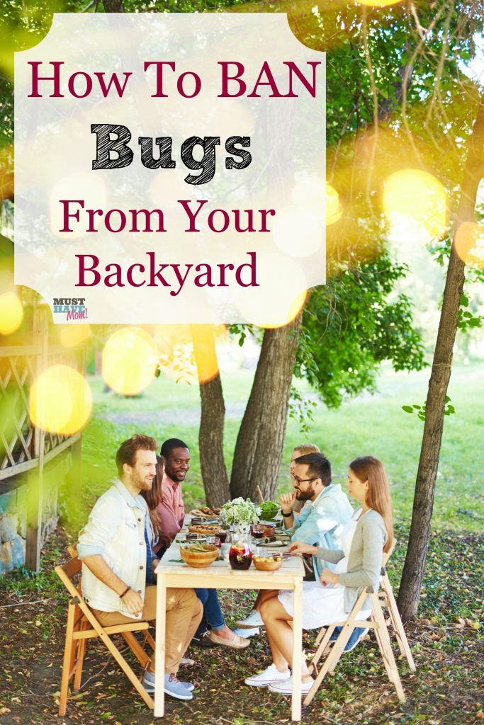 How To Get Rid Of Bugs In Your Backyard Enjoy BBQ