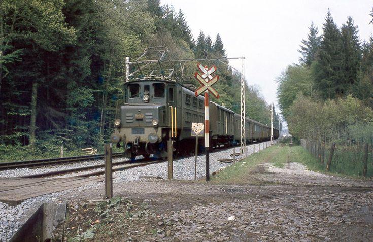 SBB, Buchs AG, Suret, Personenzug mit Ae 3/6 I 10696, Aufnahme 1961