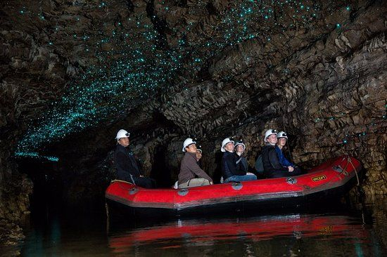 Photos of Spellbound Glowworm & Cave Tours, Waitomo Caves - Attraction Images - TripAdvisor