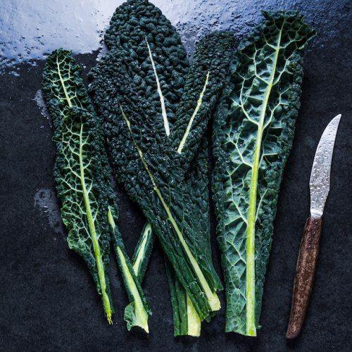 Cavolo nero: una verdura (miracolosa), mille #ricette