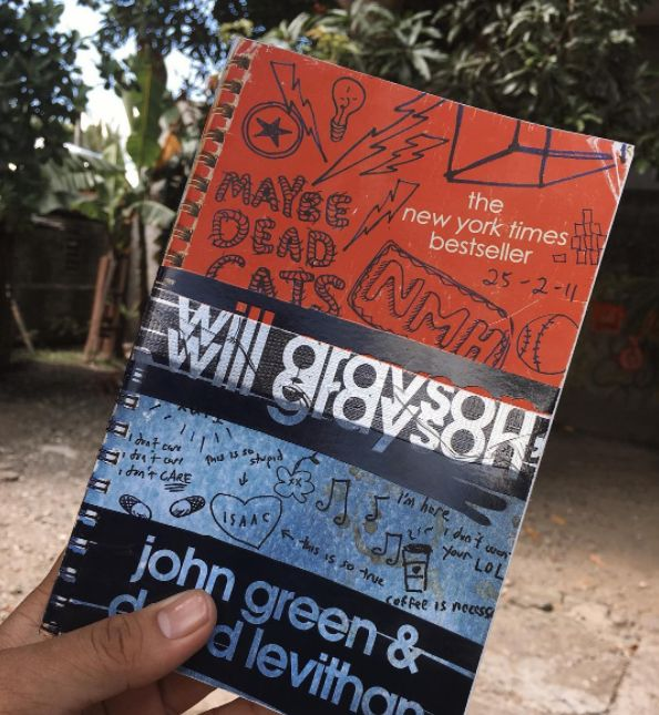 Will Grayson, Will Grayson by John Green and David Levithan | 29 YA Books About Mental Health That Actually Nail It