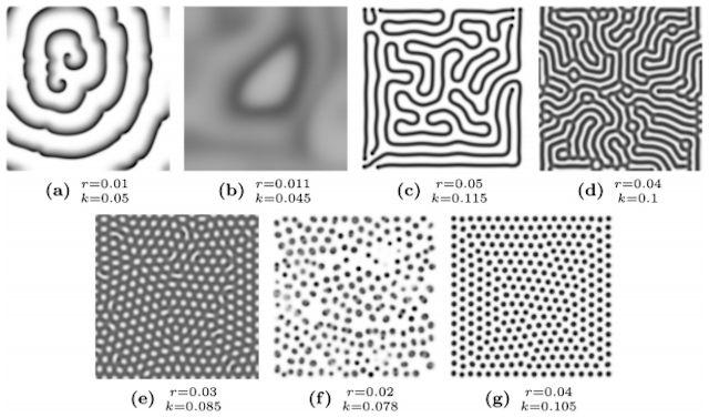 原始文明における麻薬使用に関する既存の調査では、精神活性作用をもつ様々な植物を大量摂取すると脳内に化学反応が起こり、脳の細胞構造によく似た「神経パターン(neural patterns)」が見えることがわかっています。これが俗に言う「チューリング不安定性(Turing instabilities、拡散に誘導された不安定性)」で、例えばこんなカタチ。