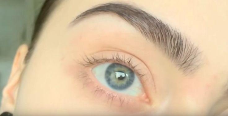 Frota limón sobre tus cejas por 4 semanas seguidas. El efecto es fenomenal!