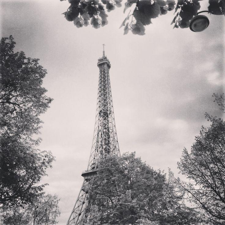 The Eiffel Tower 4/4/14 - Paris