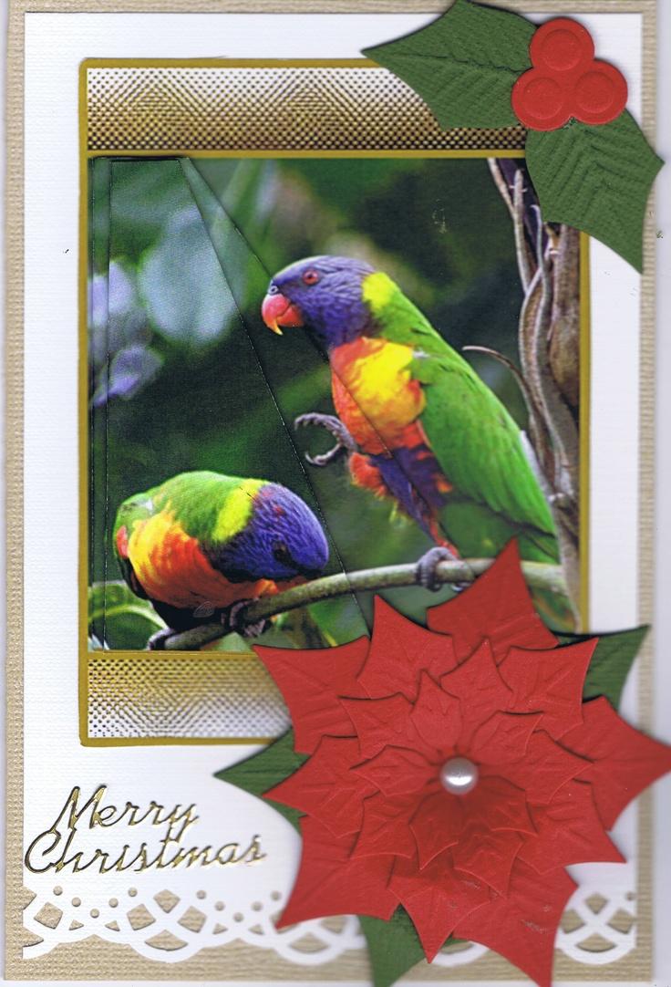 Christmas Card using Australian Bird Image