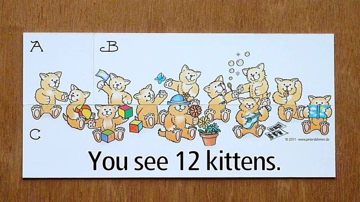 The Mysterious Kitten Puzzle
