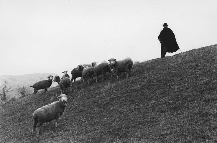"""Francesco Radino. Dalla serie """"Lucania"""", San Fele, 1981. #TuscanyAgriturismoGiratola"""
