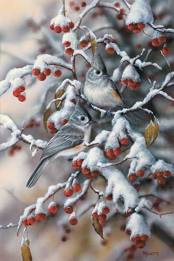 Winter Gems-Titmouse by Rosemary Millette