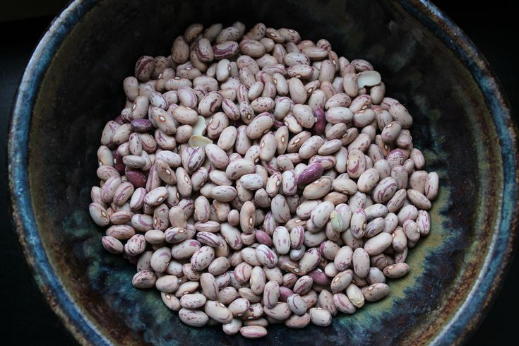 Garlicky Cranberry Beans in a Slow Cooker - Erin Brighton || gluten free recipes | slow cooker | easy sides | crockpot | eat local