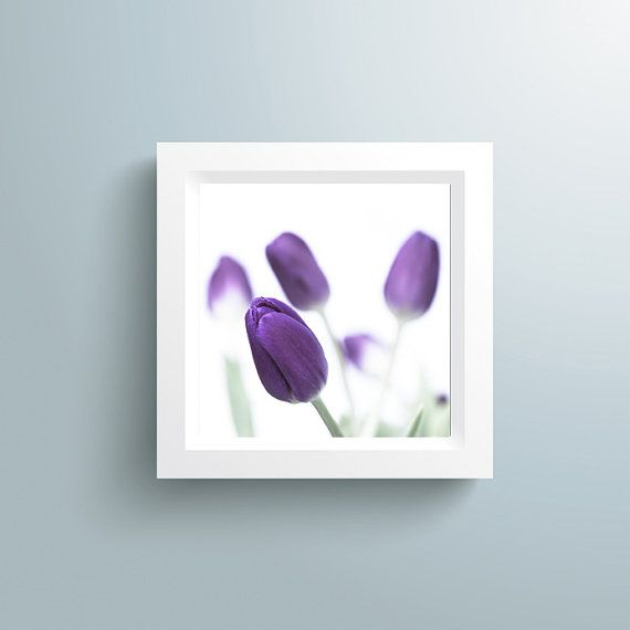 Art Print Spring Flower  Purple Tulips by CrionnaPhotography