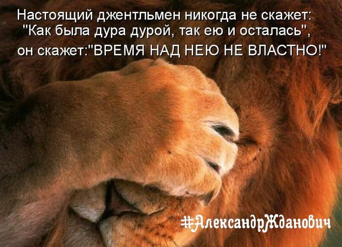 Учитесь, мужики!  #АлександрЖданович #позитив #подкофеек #юмор