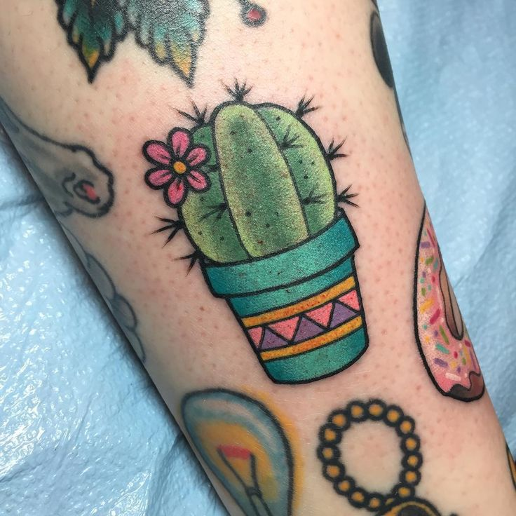 Cacti make me think of my granny and papa. All our roD trips