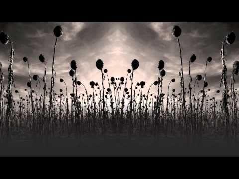 ▶ Dead Can Dance - 'Agape'