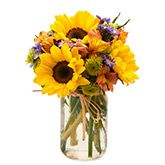 Sunflower Mason Jar at Send Flowers